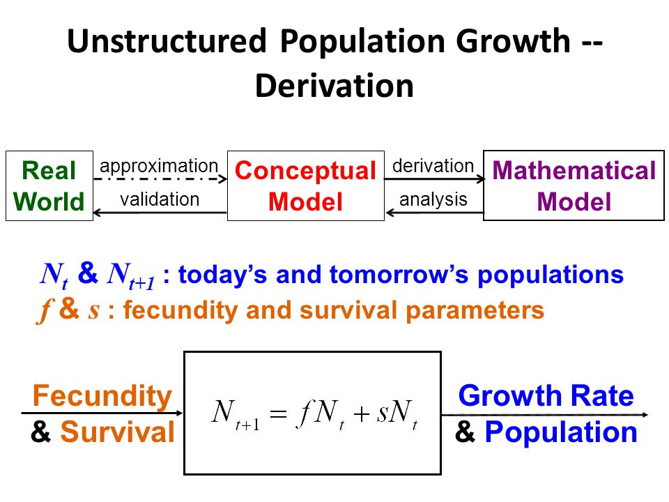 Unstructured Population Growth -- Derivation Fecundity & Survival Growth Rate & Population Real World Conceptual Model Mathematical Model approximationderivation analysisvalidation N t & N t+1 : today's and tomorrow's populations f & s : fecundity and survival parameters