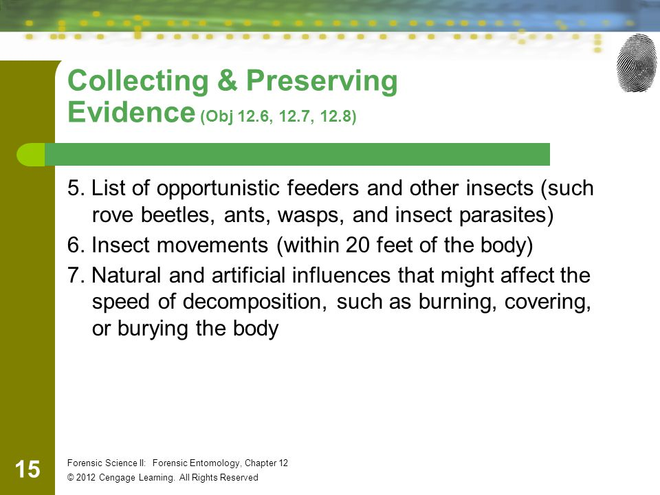 15 Forensic Science II: Forensic Entomology, Chapter 12 © 2012 Cengage Learning. All Rights Reserved Collecting & Preserving Evidence (Obj 12.6, 12.7,
