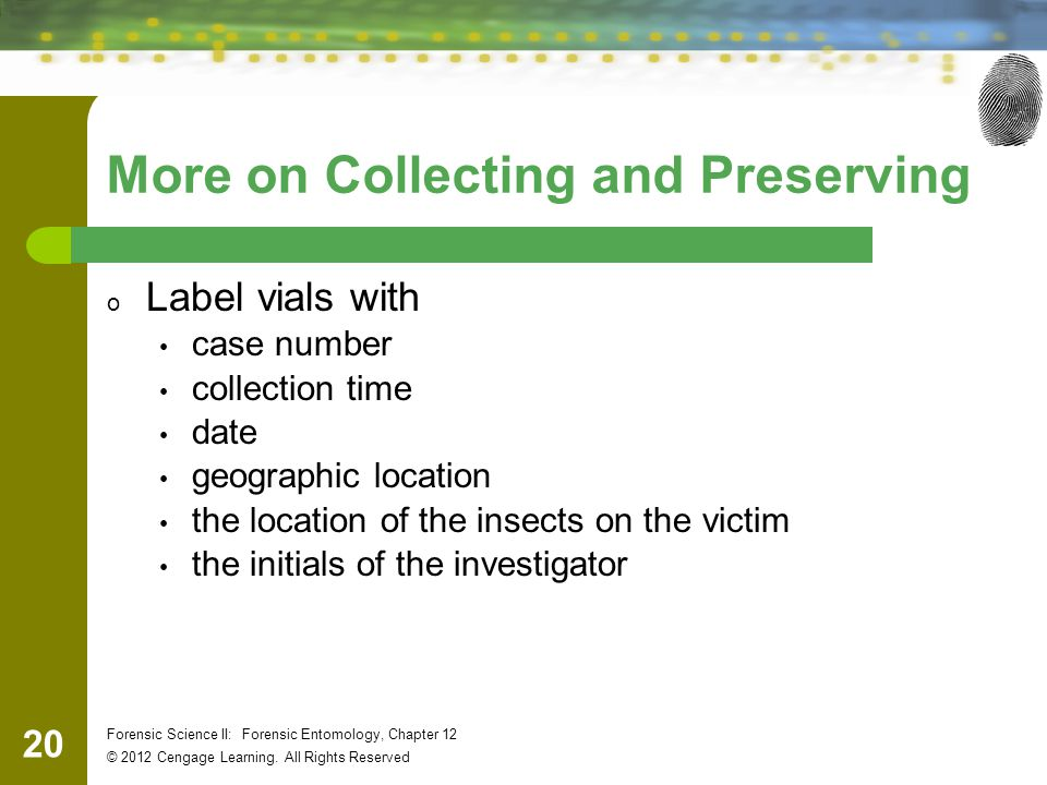 20 Forensic Science II: Forensic Entomology, Chapter 12 © 2012 Cengage Learning. All Rights Reserved More on Collecting and Preserving o Label vials w