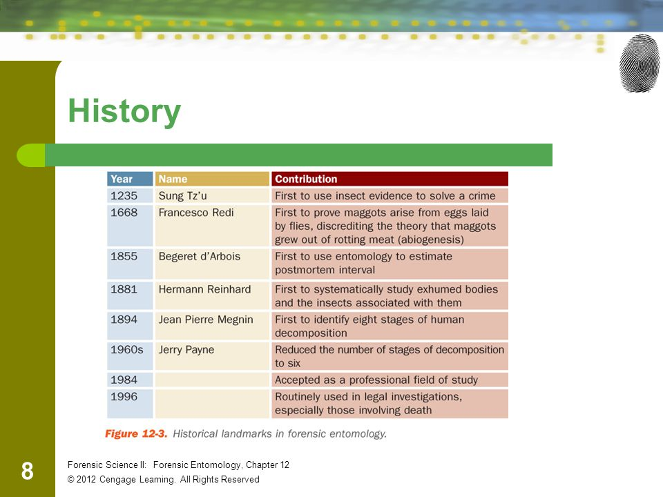 8 Forensic Science II: Forensic Entomology, Chapter 12 © 2012 Cengage Learning. All Rights Reserved History