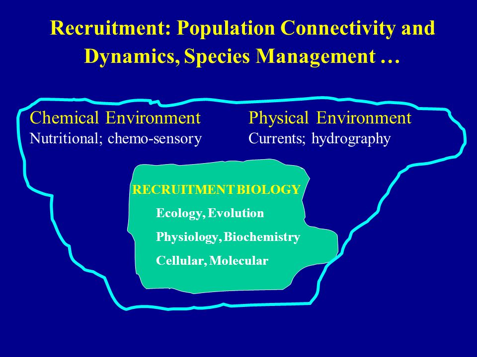 Recruitment: Population Connectivity and Dynamics, Species Management … RECRUITMENT BIOLOGY Ecology, Evolution Physiology, Biochemistry Cellular, Molecular Chemical Environment Nutritional; chemo-sensory Physical Environment Currents; hydrography