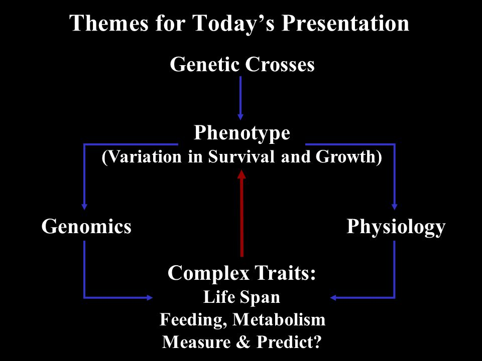 Phenotype (Variation in Survival and Growth) Genetic Crosses GenomicsPhysiology Complex Traits: Life Span Feeding, Metabolism Measure & Predict.