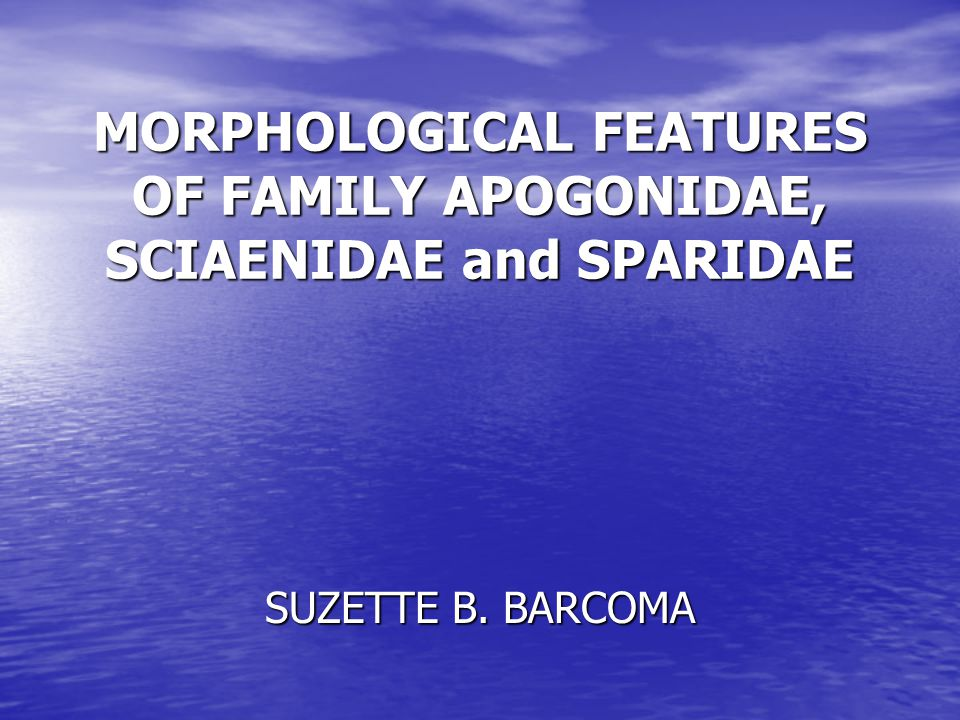 MORPHOLOGICAL FEATURES OF FAMILY APOGONIDAE