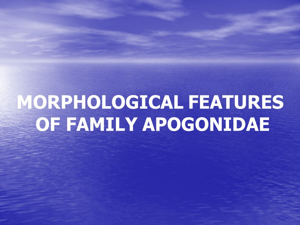 Family:Apogonidae (Cardinalfishes) Order:Perciformes (perch-likes) Class: Actinopterygii (ray-finned fishes) Subfamily:Apogoninae Biology: Inhabits coastal reefs, in sandy or weedy areas.