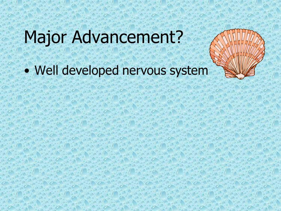 Major Advancement? Well developed nervous system