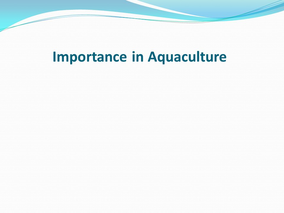 Importance in Aquaculture