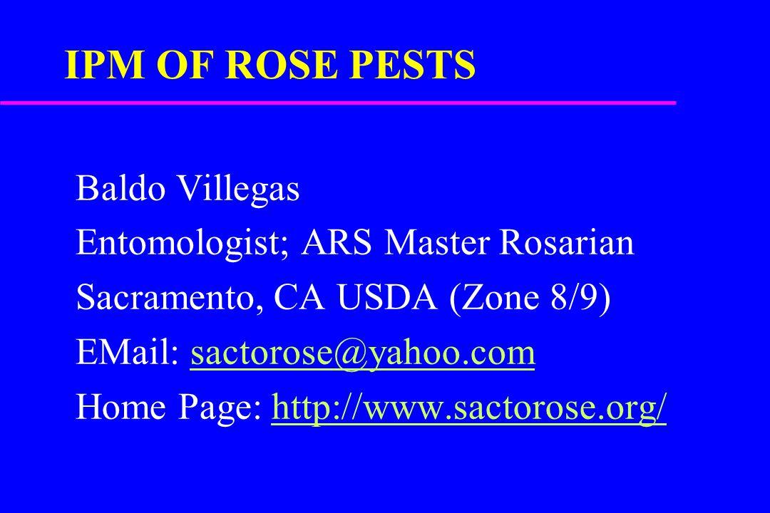IPM OF ROSE PESTS Baldo Villegas Entomologist; ARS Master Rosarian Sacramento, CA USDA (Zone 8/9) EMail: sactorose@yahoo.comsactorose@yahoo.com Home Page: http://www.sactorose.org/http://www.sactorose.org/