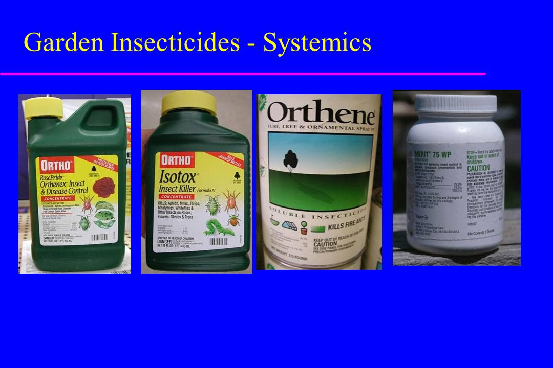 Garden Insecticides - Systemics