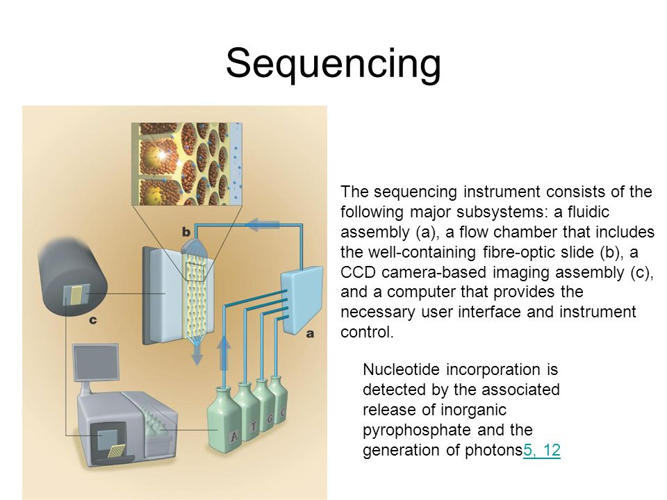 Sequencing The sequencing instrument consists of the following major subsystems: a fluidic assembly (a), a flow chamber that includes the well-contain