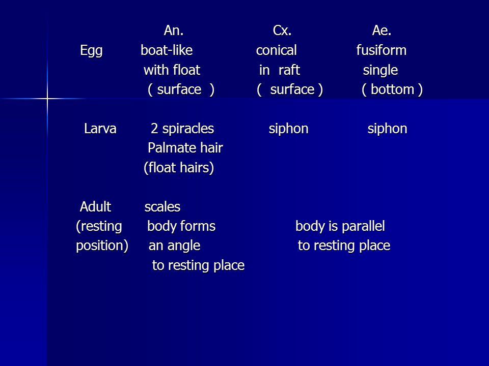 An. Cx. Ae. An. Cx. Ae. Egg boat-like conical fusiform Egg boat-like conical fusiform with float in raft single with float in raft single ( surface )