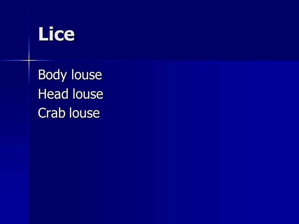 Lice Body louse Head louse Crab louse