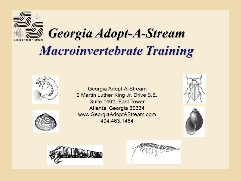 Georgia Adopt-A-Stream Macroinvertebrate Training Georgia Adopt-A-Stream 2 Martin Luther King Jr. Drive S.E. Suite 1462, East Tower Atlanta, Georgia 3