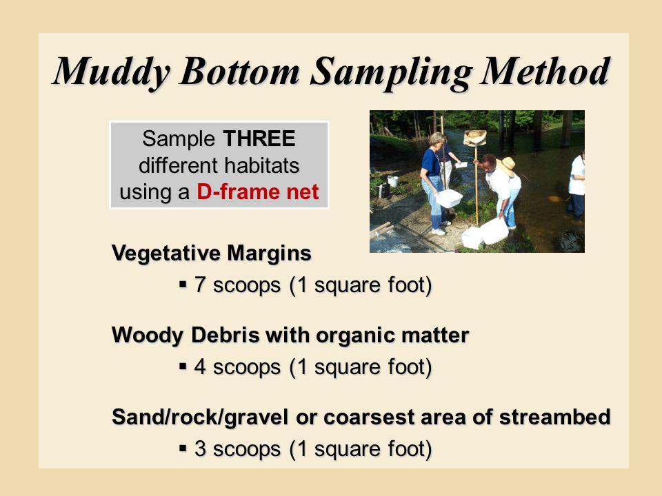 Muddy Bottom Sampling Method Vegetative Margins  7 scoops (1 square foot) Woody Debris with organic matter  4 scoops (1 square foot) Sand/rock/grave