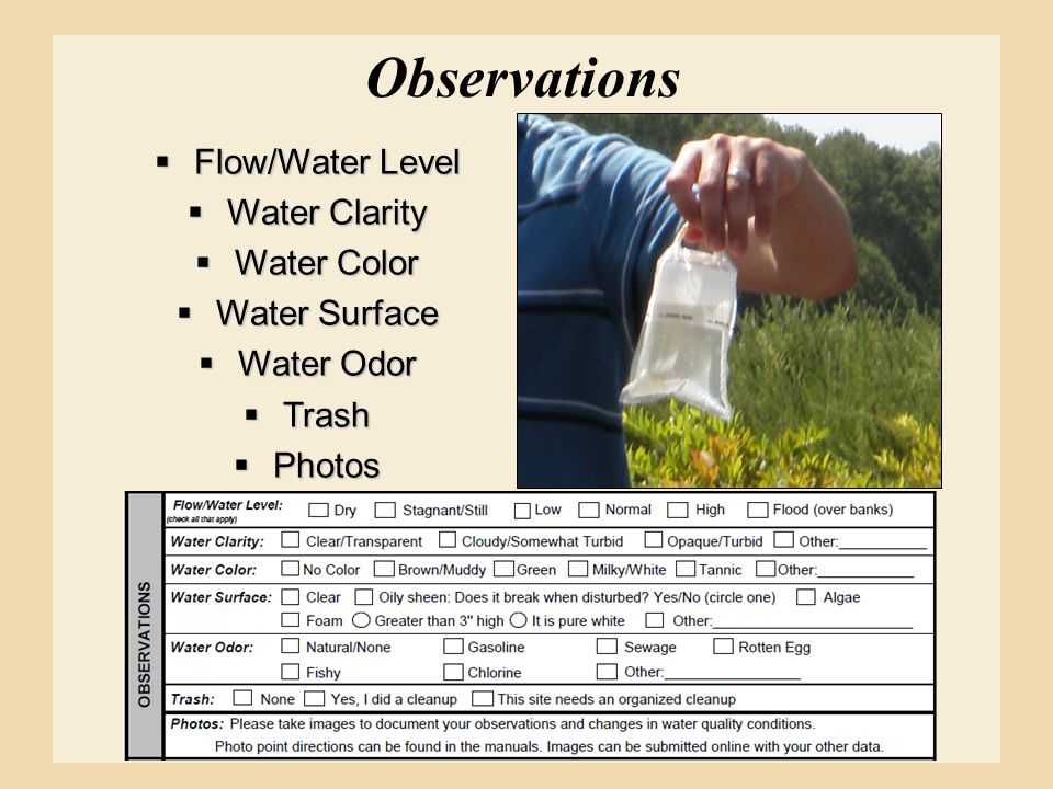 Observations  Flow/Water Level  Water Clarity  Water Color  Water Surface  Water Odor  Trash  Photos