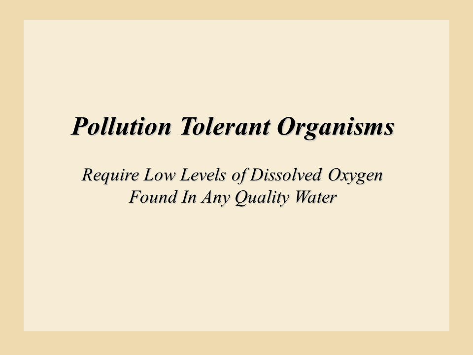 Pollution Tolerant Organisms Require Low Levels of Dissolved Oxygen Found In Any Quality Water