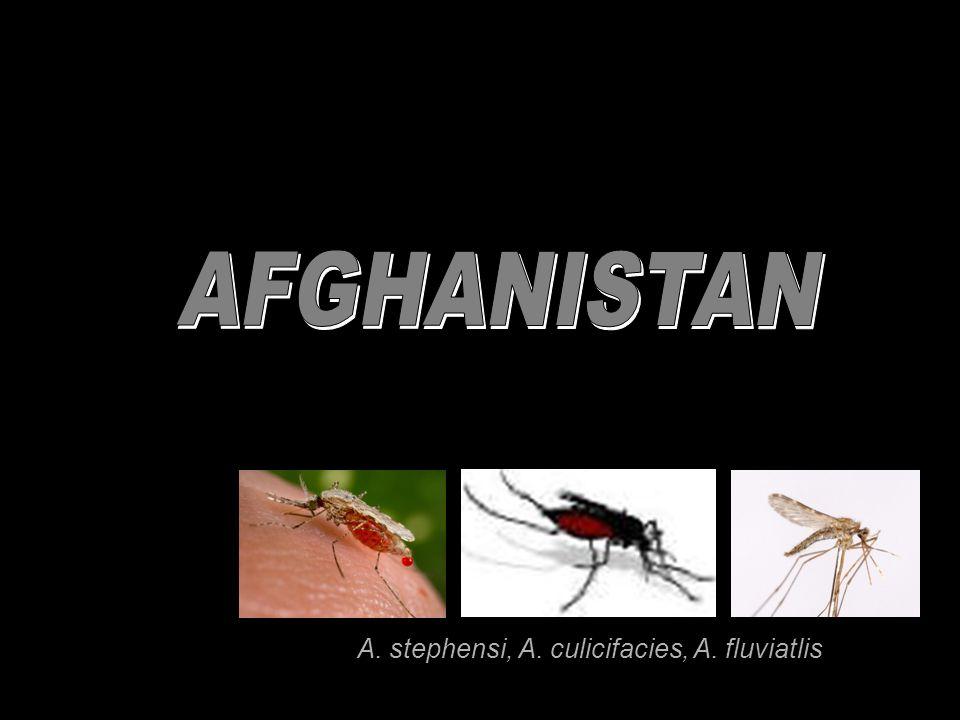 A. stephensi, A. culicifacies, A. fluviatlis