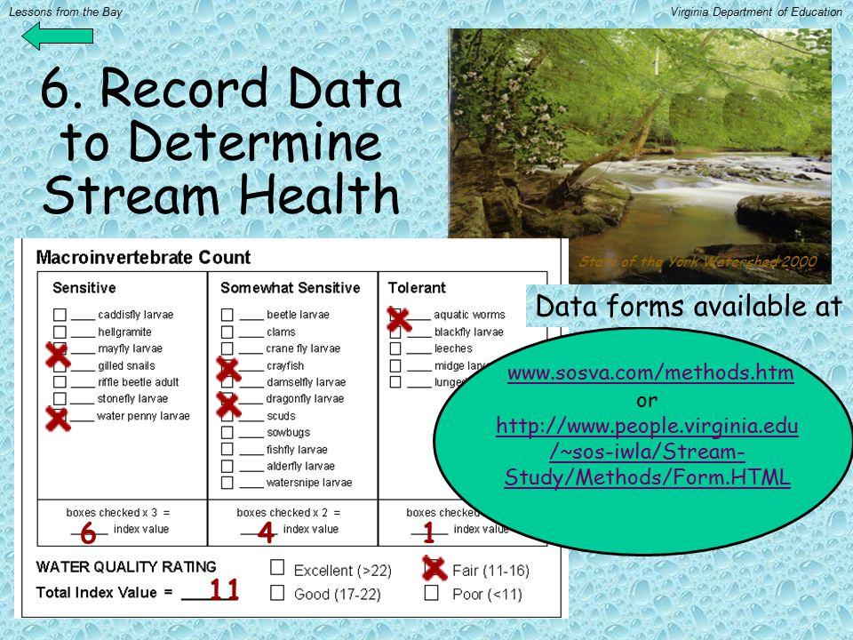 6. Record Data to Determine Stream Health www.sosva.com/methods.htm or http://www.people.virginia.edu /~sos-iwla/Stream- Study/Methods/Form.HTML www.s