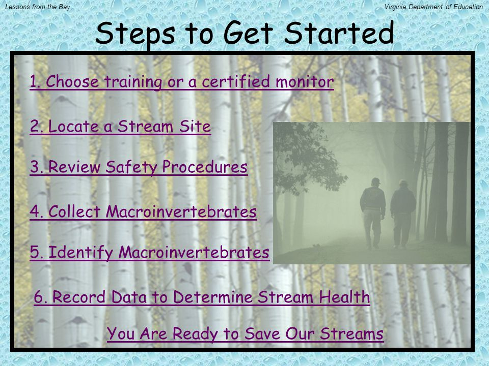 Steps to Get Started 1. Choose training or a certified monitor 2. Locate a Stream Site 3. Review Safety Procedures 4. Collect Macroinvertebrates 5. Id