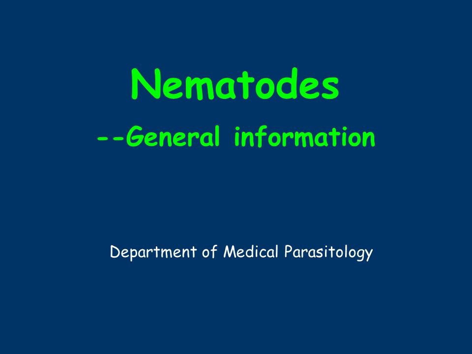 Nematodes --General information Department of Medical Parasitology