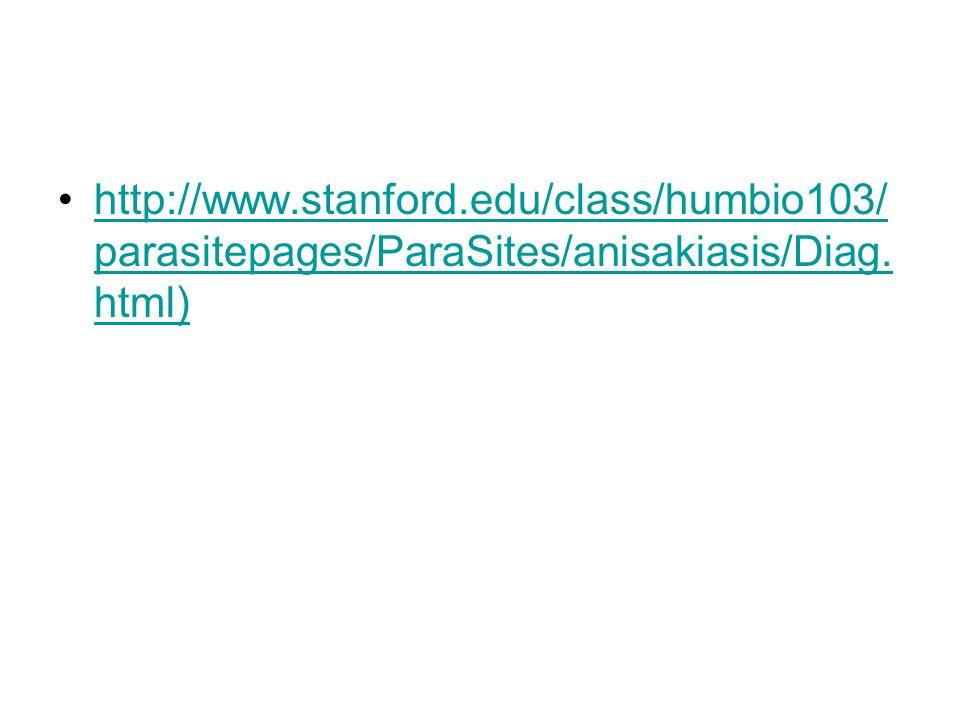 http://www.stanford.edu/class/humbio103/ parasitepages/ParaSites/anisakiasis/Diag. html)http://www.stanford.edu/class/humbio103/ parasitepages/ParaSit