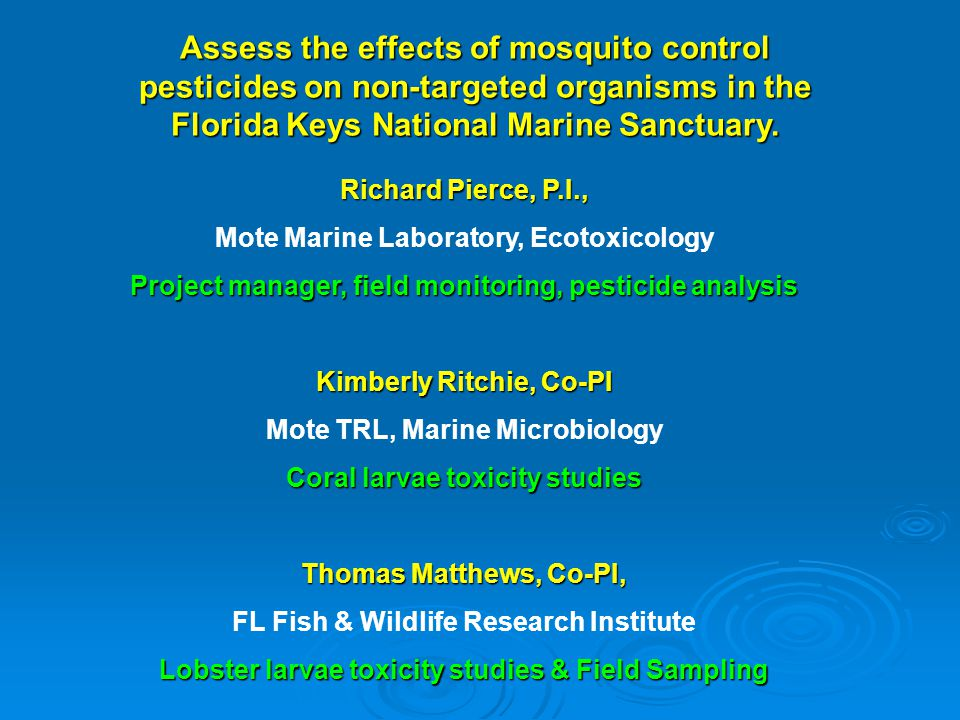 Assess the effects of mosquito control pesticides on non-targeted organisms in the Florida Keys National Marine Sanctuary. Richard Pierce, P.I., Mote