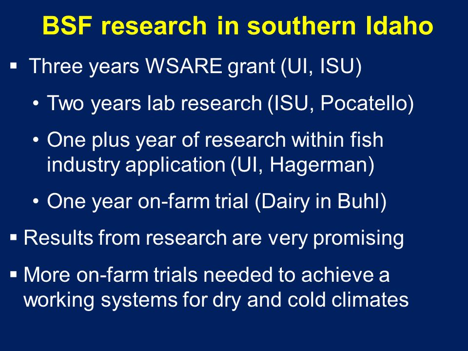 BSF research in southern Idaho  Three years WSARE grant (UI, ISU) Two years lab research (ISU, Pocatello) One plus year of research within fish indus