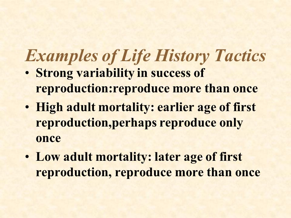 Examples of Life History Tactics Strong variability in success of reproduction:reproduce more than once High adult mortality: earlier age of first rep