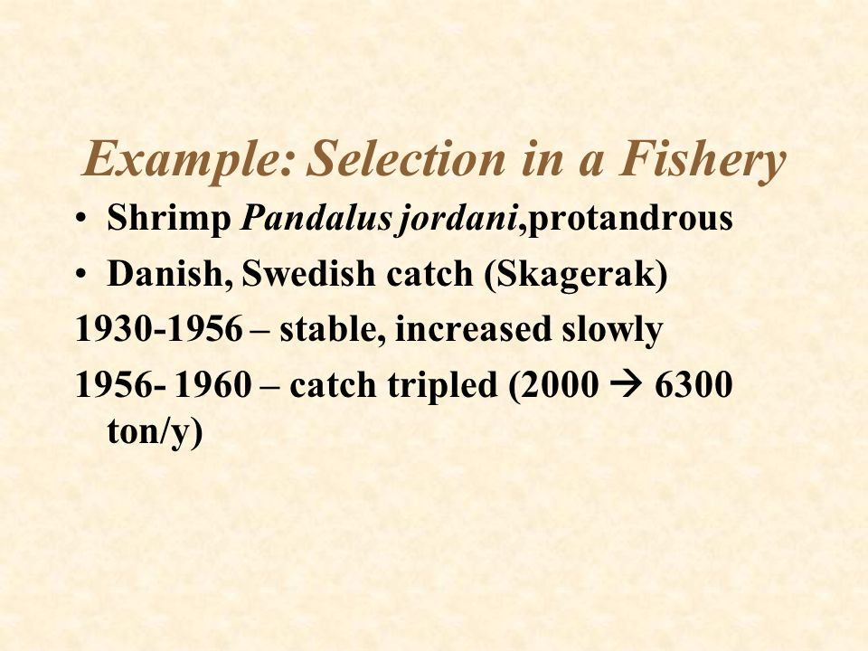 Example: Selection in a Fishery Shrimp Pandalus jordani,protandrous Danish, Swedish catch (Skagerak) 1930-1956 – stable, increased slowly 1956- 1960 –