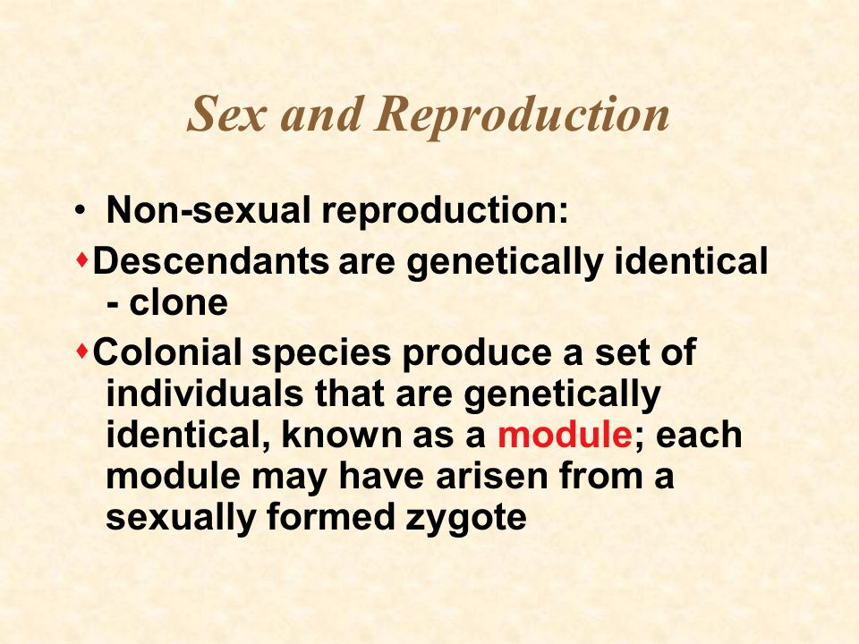Sex and Reproduction Non-sexual reproduction:  Descendants are genetically identical - clone  Colonial species produce a set of individuals that are