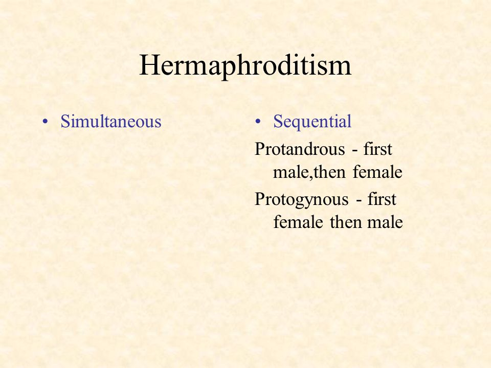 Hermaphroditism SimultaneousSequential Protandrous - first male,then female Protogynous - first female then male