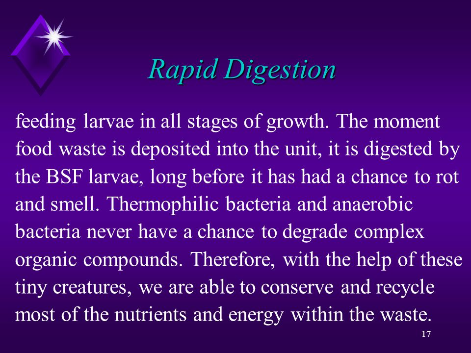 17 Rapid Digestion feeding larvae in all stages of growth.