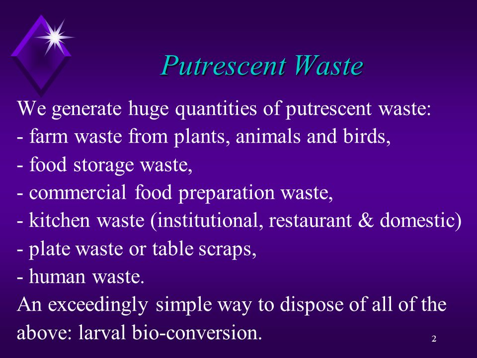 2 Putrescent Waste We generate huge quantities of putrescent waste: - farm waste from plants, animals and birds, - food storage waste, - commercial food preparation waste, - kitchen waste (institutional, restaurant & domestic) - plate waste or table scraps, - human waste.