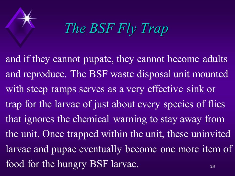 23 The BSF Fly Trap and if they cannot pupate, they cannot become adults and reproduce.