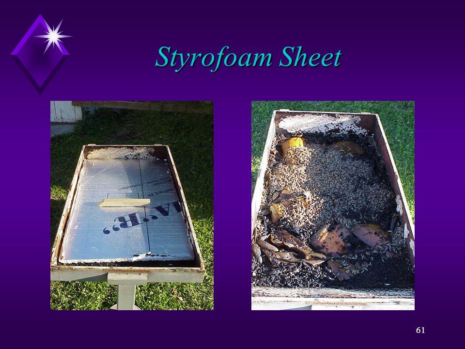 61 Styrofoam Sheet