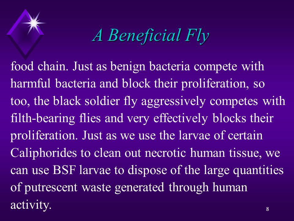 89 A Bundle of Nutrients of food toxins.
