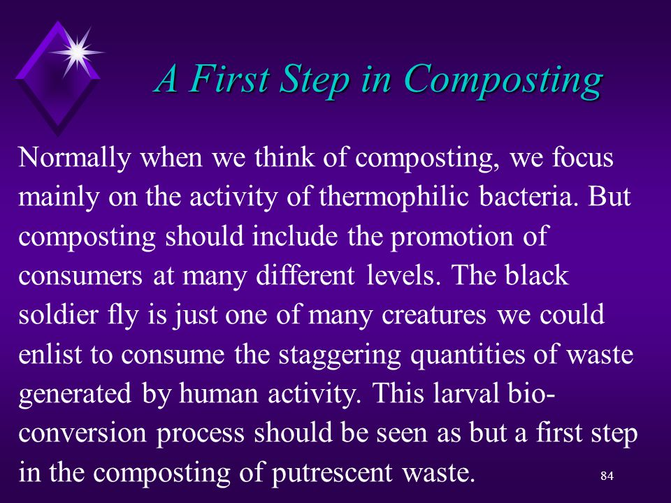 84 A First Step in Composting Normally when we think of composting, we focus mainly on the activity of thermophilic bacteria.