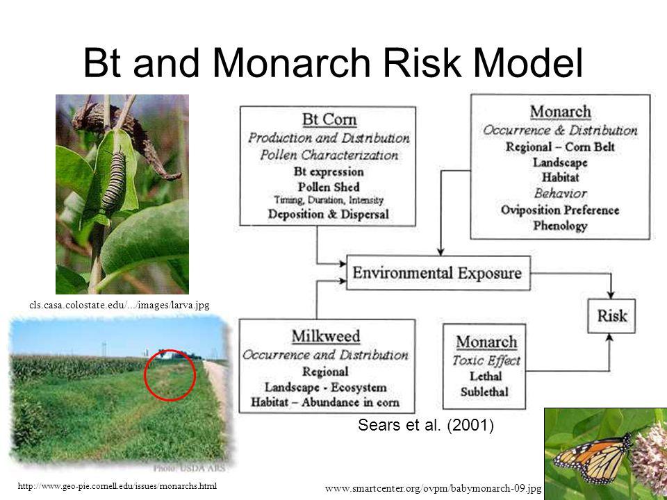 Bt and Monarch Risk Model Sears et al. (2001) http://www.geo-pie.cornell.edu/issues/monarchs.html cls.casa.colostate.edu/.../images/larva.jpg www.smar