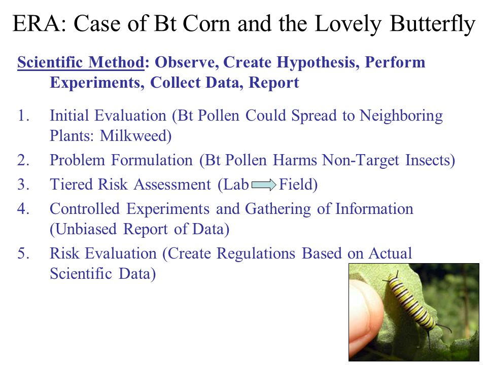 ERA: Case of Bt Corn and the Lovely Butterfly Scientific Method: Observe, Create Hypothesis, Perform Experiments, Collect Data, Report 1.Initial Evalu