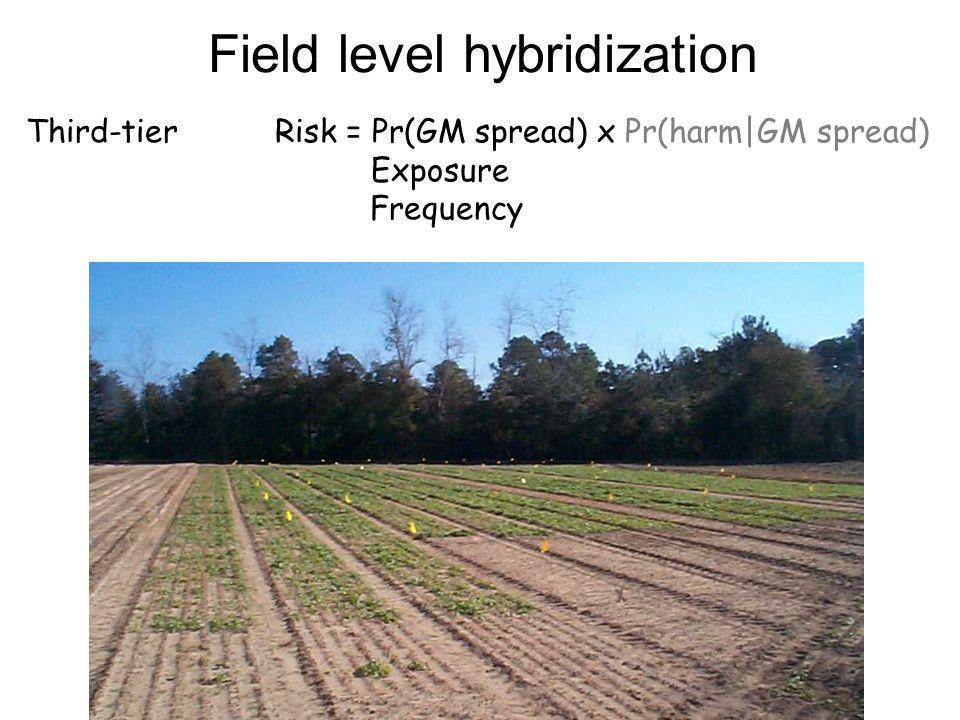 Field level hybridization Third-tier Risk = Pr(GM spread) x Pr(harm|GM spread) Exposure Frequency