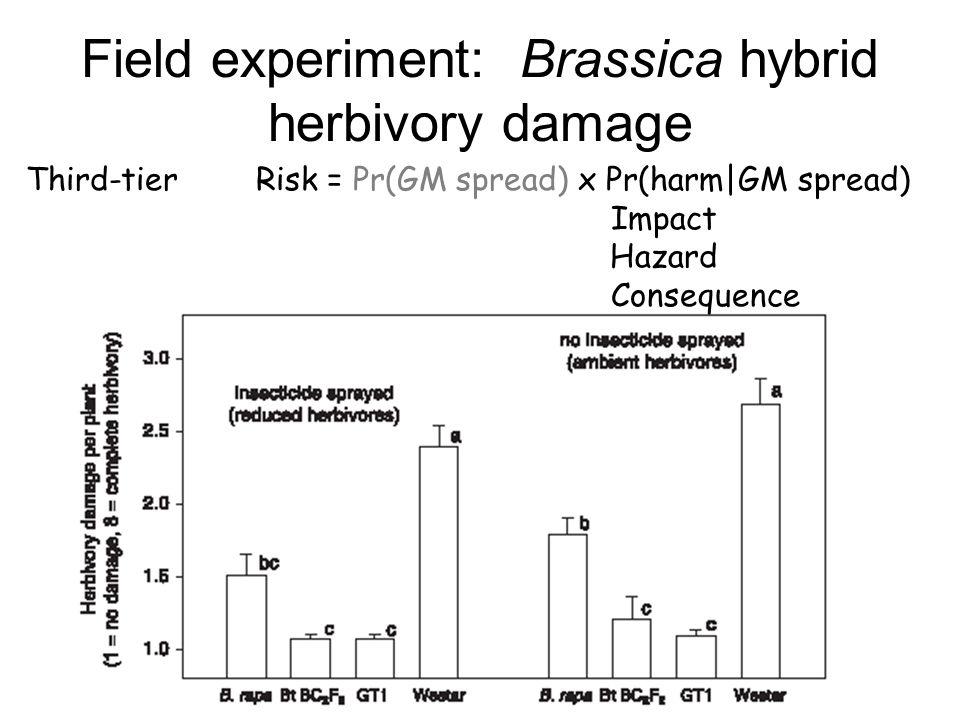 Field experiment: Brassica hybrid herbivory damage Third-tier Risk = Pr(GM spread) x Pr(harm|GM spread) Impact Hazard Consequence