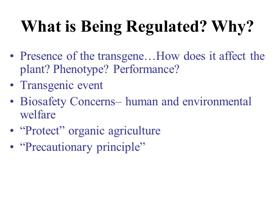 What is Being Regulated? Why? Presence of the transgene…How does it affect the plant? Phenotype? Performance? Transgenic event Biosafety Concerns– hum
