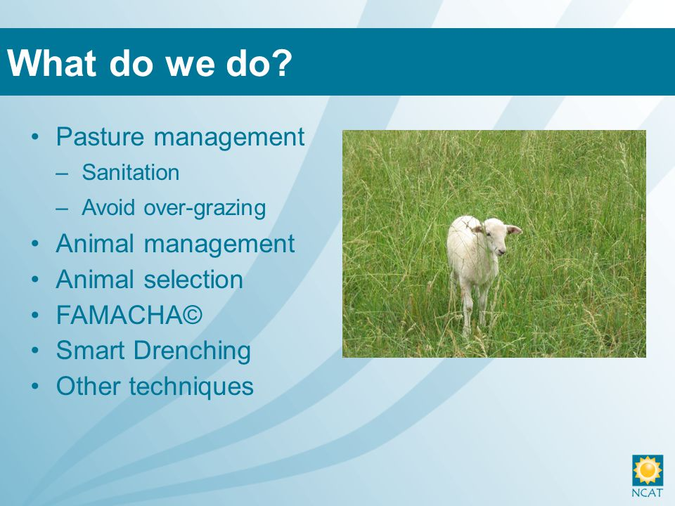 Pasture management –Sanitation –Avoid over-grazing Animal management Animal selection FAMACHA© Smart Drenching Other techniques What do we do