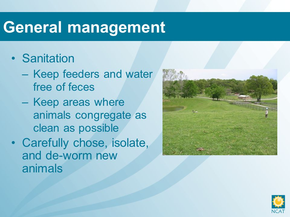 Sanitation –Keep feeders and water free of feces –Keep areas where animals congregate as clean as possible Carefully chose, isolate, and de-worm new animals General management