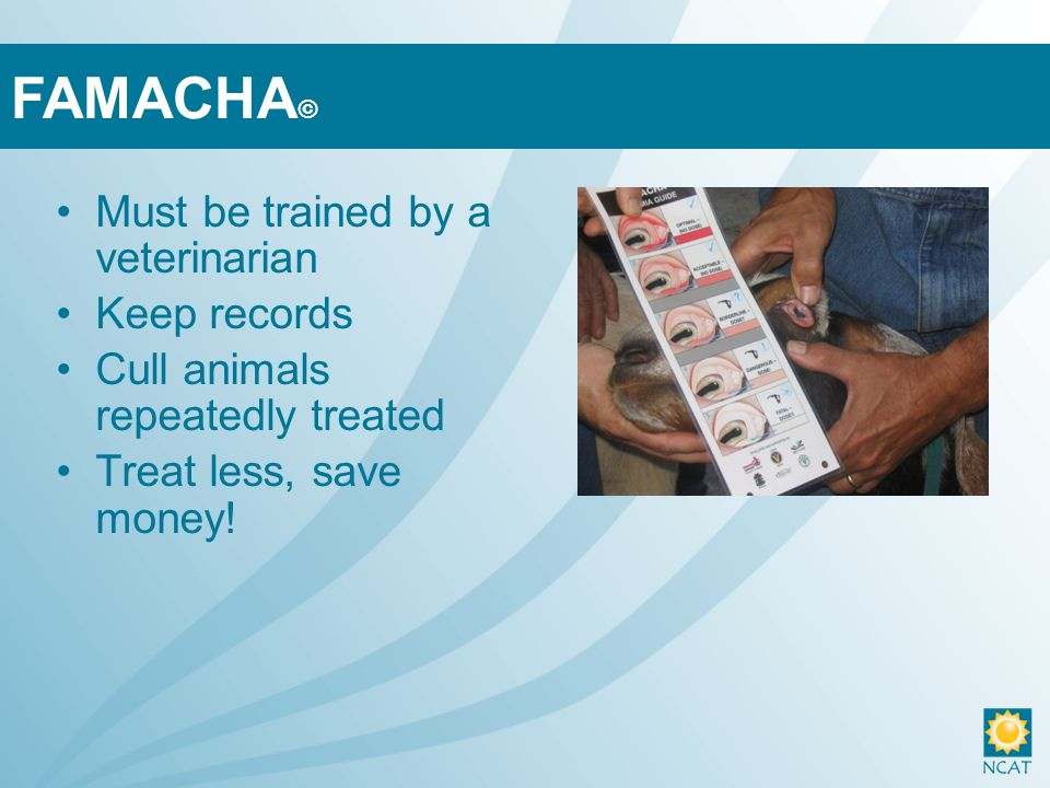 Must be trained by a veterinarian Keep records Cull animals repeatedly treated Treat less, save money.