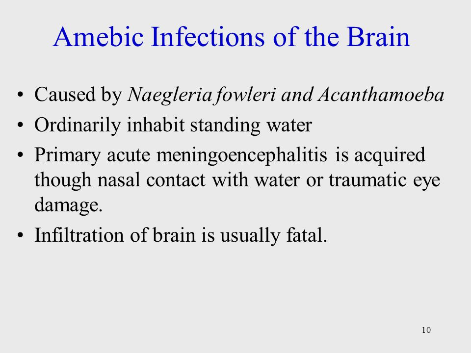10 Amebic Infections of the Brain Caused by Naegleria fowleri and Acanthamoeba Ordinarily inhabit standing water Primary acute meningoencephalitis is