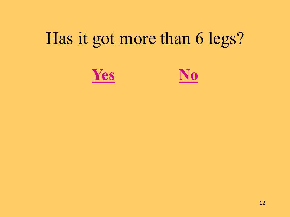 12 Has it got more than 6 legs? YesNo