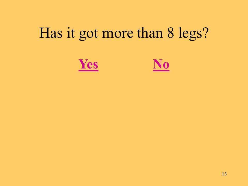 13 Has it got more than 8 legs? YesNo