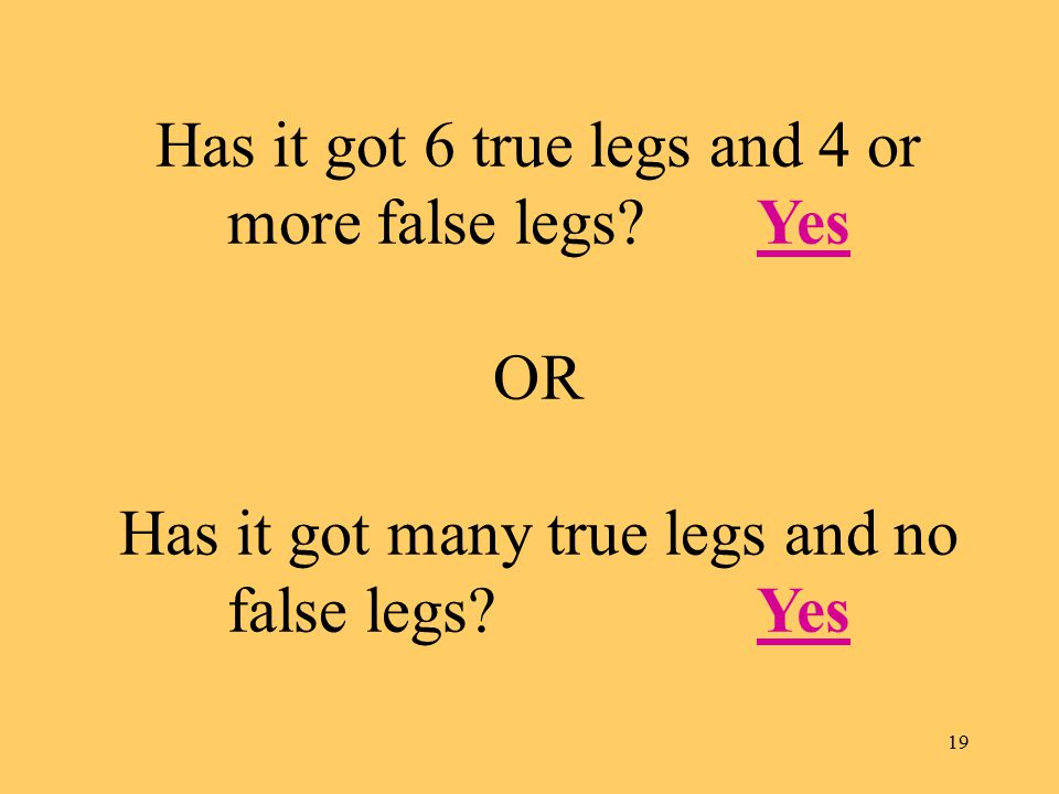 19 Has it got 6 true legs and 4 or more false legs.