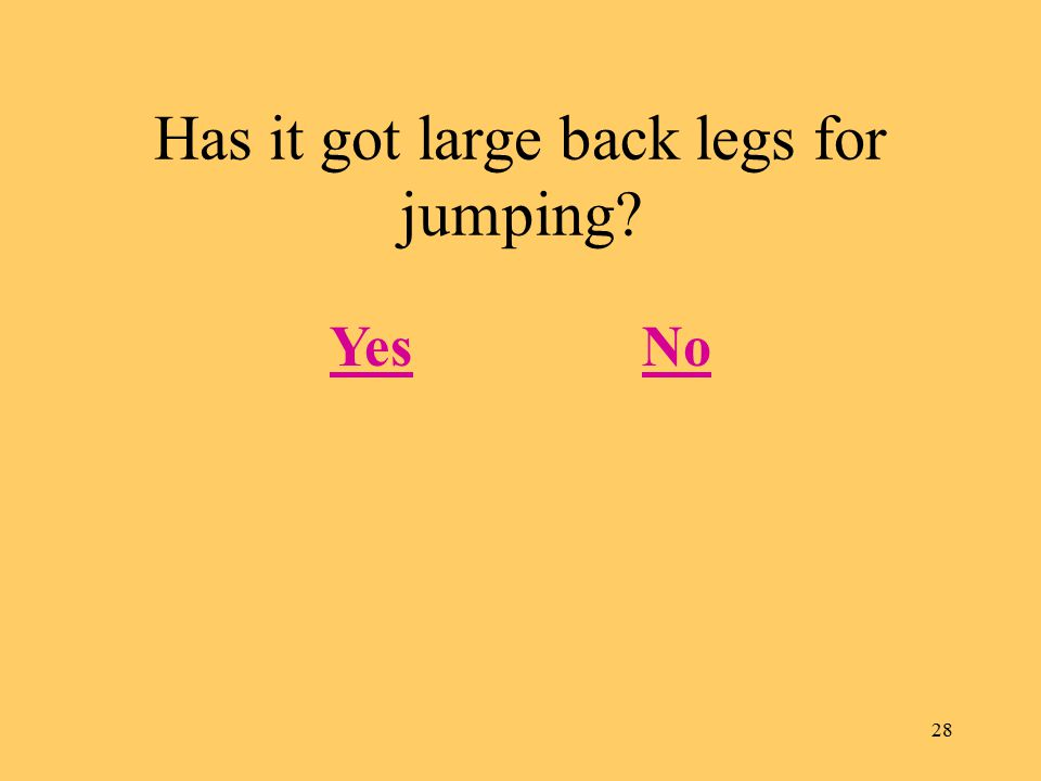 28 Has it got large back legs for jumping? YesNo