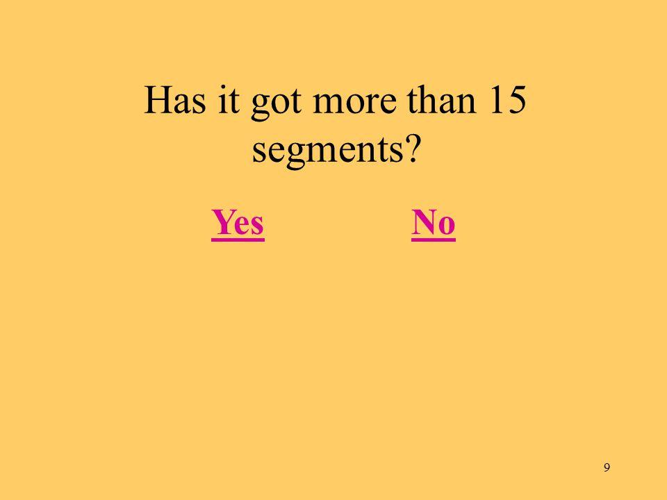 9 Has it got more than 15 segments YesNo